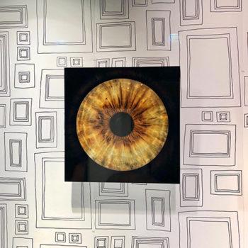 pupille retine iris prise de vue oeil C l'optique lunetorologisterie opticien indépendant strasbourg centre ville alsace bas rhin claude fersing